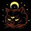 Cat Coven