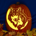 Wolf Love CO