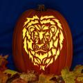 Lion CO
