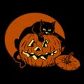 Cat Guarding Pumpkin 02