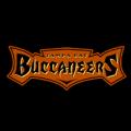 Tampa Bay Buccaneers 02