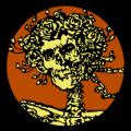 Grateful Dead Skull and Roses 01