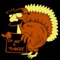 Turkey 05