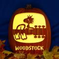 Woodstock 1969 CO