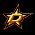 Dallas Stars 13