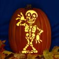 Silly Skeleton CO