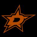Dallas Stars 15