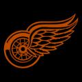 Detroit Red Wings 02