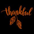 Thankful 01