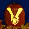 Twilight Hands CO