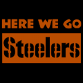 Pittsburgh Steelers 13