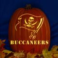 Tampa Bay Buccaneers 02 CO