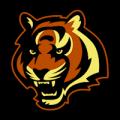 Cincinnati Bengals 01