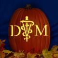 DVM 01 CO
