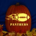 Carolina Panthers 08 CO