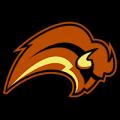 Buffalo Sabres 03