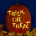Trick or Treat CO