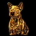Mini Bull Terrier 05