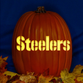 Pittsburgh Steelers 02 CO