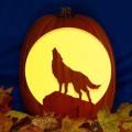 Wolf Moon CO
