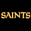 New Orleans Saints 06