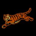 Cincinnati Bengals 02