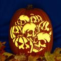 Pumpkins and Skulls CO