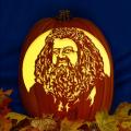 Hagrid CO