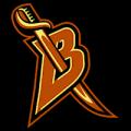 Buffalo Sabres 04
