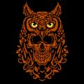 Owl Skull 02