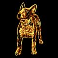 Mini Bull Terrier 01