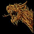 Draco_Dragon_01_MOCK.png