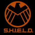 Marvel The Avengers Shield 04
