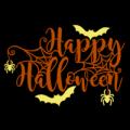 Happy Halloween Bats and Spiders 02