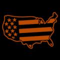 US Flag 01