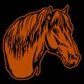 Horse Head 02
