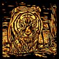 Tiger Bath