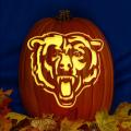 Chicago Bears 03 CO