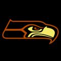 Seattle Seahawks 01