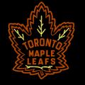 Toronto Maple Leafs 07