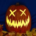 Pumpkin X CO