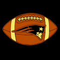 New England Patriots 09
