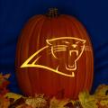 Carolina Panthers 01 CO