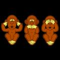 No Evils Monkeys