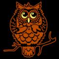 Bashful Owl