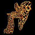 Baby and Mom Giraffe